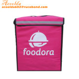 Scooter Pizza Food Delivery Bag with Velcro Divider