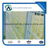 Galvanized Double Wire Mesh Fencing