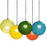 Modern Simple Indoor Hanging Pendant Lamp in Rattan