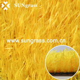 Synthetic Grass Carpet From Sungrass (QDS-RBY)