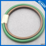 Machinery Glyd Ring for Hole Seal
