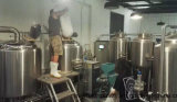 Micro Beer Brewery Brewing Plant 300L Craft Equipment for Pub
