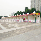 5mx5m Small Canopy Pagoda Tent for Event, Pavilion