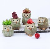 Wholesale Mini Ceramic Owl Flower Pot for Succulent Plant