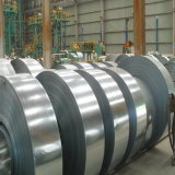 Wholesale Hot Dipped Galvanized Steel Coil White Coil