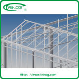 Glass Multispan Greenhouse with butterfly vent