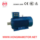 Hm Series Low-Voltage Large-Power Totally Enclosed Squirrel-Cage Motor