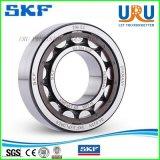 SKF NSK Timken Koyo NTN Cylindrical Roller Bearing Nu202 Nu203 Nu204 Nu205 Nu206 Ec Ecp Ecj Ecm /C3 Nu232 Nu234 Nu238 Nu240 Nu244 Ecm Ecma Ma /C3 C4