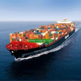 From China Air and Sea Ocean Shipping Logistics Service