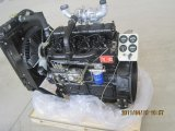Ricardo 4 Cylinders Turbocharged Water Cooled 42kw 1500rpm Diesel Engine for Sale