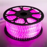 Optional SMD 5050 2835 RGB Flexible LED Strip Light with Good Raw Material