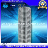 Hot Dipped Galvanized Welded Wire Mesh Panel in 6 Gauge