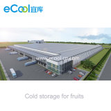 Original Factory Customized Cold Storage for Fruits and Vegetables Fresh Keeping
