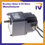 Permanent Magnet 24V-36V 20W-60W Pm Brushless or Brush DC BLDC Motor with Ce