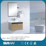 Hot Wall Hung Modern Stainless Steel Vanity with Mirror Hle-053