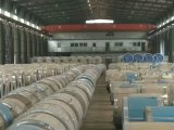 750mm Width Ral System PPGI Prepainted Galvanized Steel Coil
