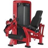 Gym Equipment Hot Sale Exercise Machine OS-T011 Leg Extension