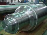 Generator Rotor/Forged Shaft