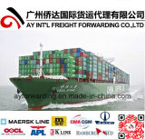 Fast Sea Freight to Indonesia