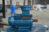 High Effiency Reliable Permanent Magnet Motor