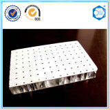 Beecore Aluminum Honeycomb Panel for Ceiling
