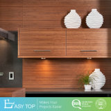 Customized Designs Wooden Lacquer Kitchen Cabinet