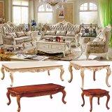 Fabric Sofa Set for Living Room Furniture (510D)