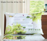 Printed Pearl Cotton New Style Semen Cassia Therapy Pillow