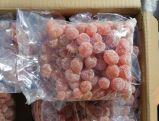 Dried Fruits From China (kumquat, Kiwi, cherry, apple, strawberry, papaya, etc) Cheap