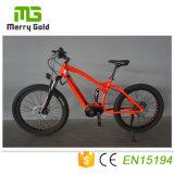 "26""X3.0 Fat Tire Electric Mountain Bike with MID Drive Motor Ebike China"