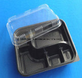 Food Packaging Container Takeaway Food Packaging Container Lunch Box