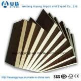 Dynea Film Faced Plywood for Building Construction Materials
