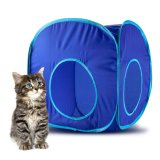 Animal Dog Kitty Cat Play Cube for Kitten, Puppy Rabbit