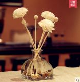 Factory Direct Sale Handmade of Reed Diffuser Type Sola Artifical Flower Home Decoration