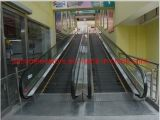 SANYO Outdoor Heavy Duty Multifunctional Moving Walk at Public Places with Ce Certification