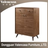 shoes Case Cabinet for Home Hotel