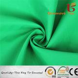 210t Nylon Taffeta/Nylon Taffeta for Garment/100% Nylon Taffeta