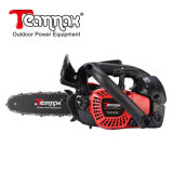 Carving Chain Saw Two-Stroke Engine 18.3 Cc with Ce, GS, Euro II Certification