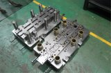Stamping Mould, Progresive Stamping Die for Soybean Milk Maker