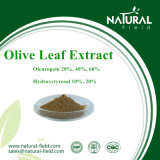 Health Food Product Olive Leaf Extract, Oleuropein CAS: 32619-42-4 Plant Extract