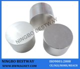 High Quality Permanent Neodymium Cylinder Magnet with CE/RoHS