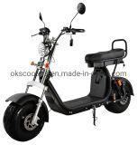 Best Price Fat Tire EEC Coc Electric Motorcycles Bicicletas Elctricas Trotinette Electrique 2000W