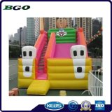 PVC Pirate Theme Inflatable Double Lane Slip Slide