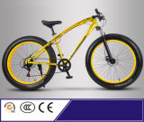 New Modle High Grade Aluminium Alloy Fat Snow Bike for Europe