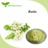 Plant Extract Rutin/Sophora Japonica Extract with CAS 153-18-4