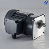 CV...S High Ratio Light Duty Type Small AC Motor_D