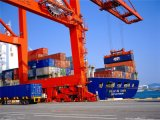 Fob Sea Shipping From China to Maputo/Beira, Mozambique
