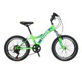 OEM ODM Available 16 Inch Children Bike with Good Price/Best Quality Child Bicycle