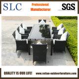 Wicker Furniture/Wicker Dining Set/Rattan Chair (SC-B8849-B)