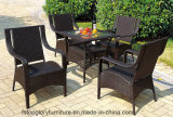 Garden Patio Dining Table and Chairs for Outdoor Furniture (TG-082)